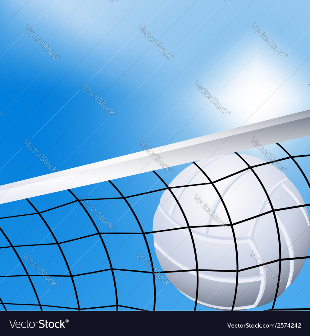 Volleyball in the net vector | Price: 1 Credit (USD $1)