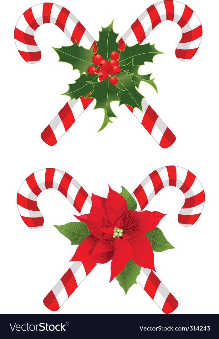 Christmas candy cane decorated designs vector | Price: 1 Credit (USD $1)