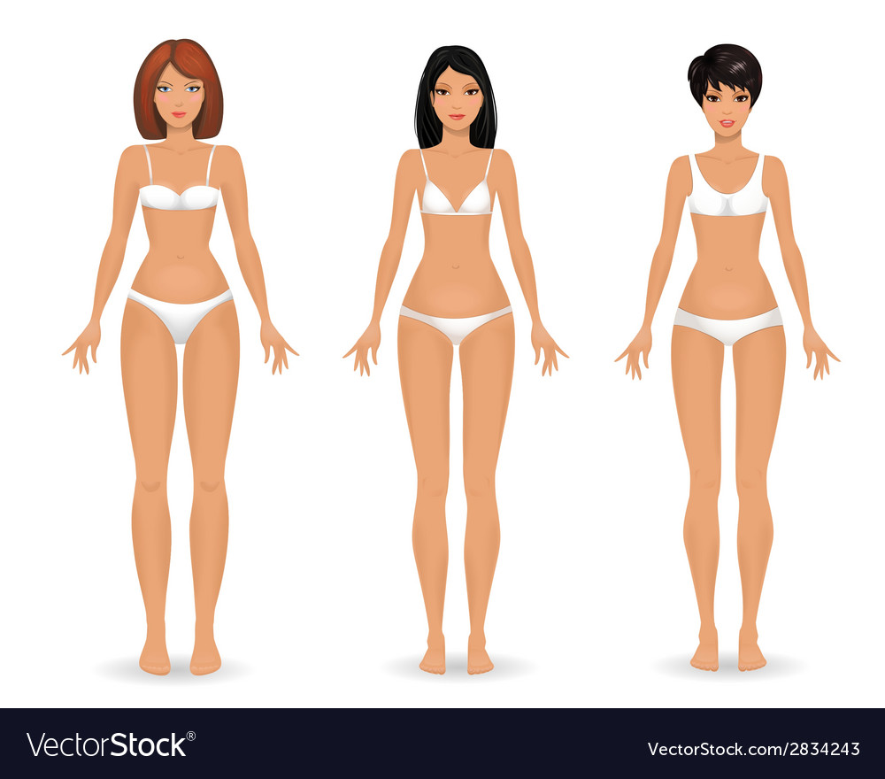 Collection female body template front vector | Price: 1 Credit (USD $1)