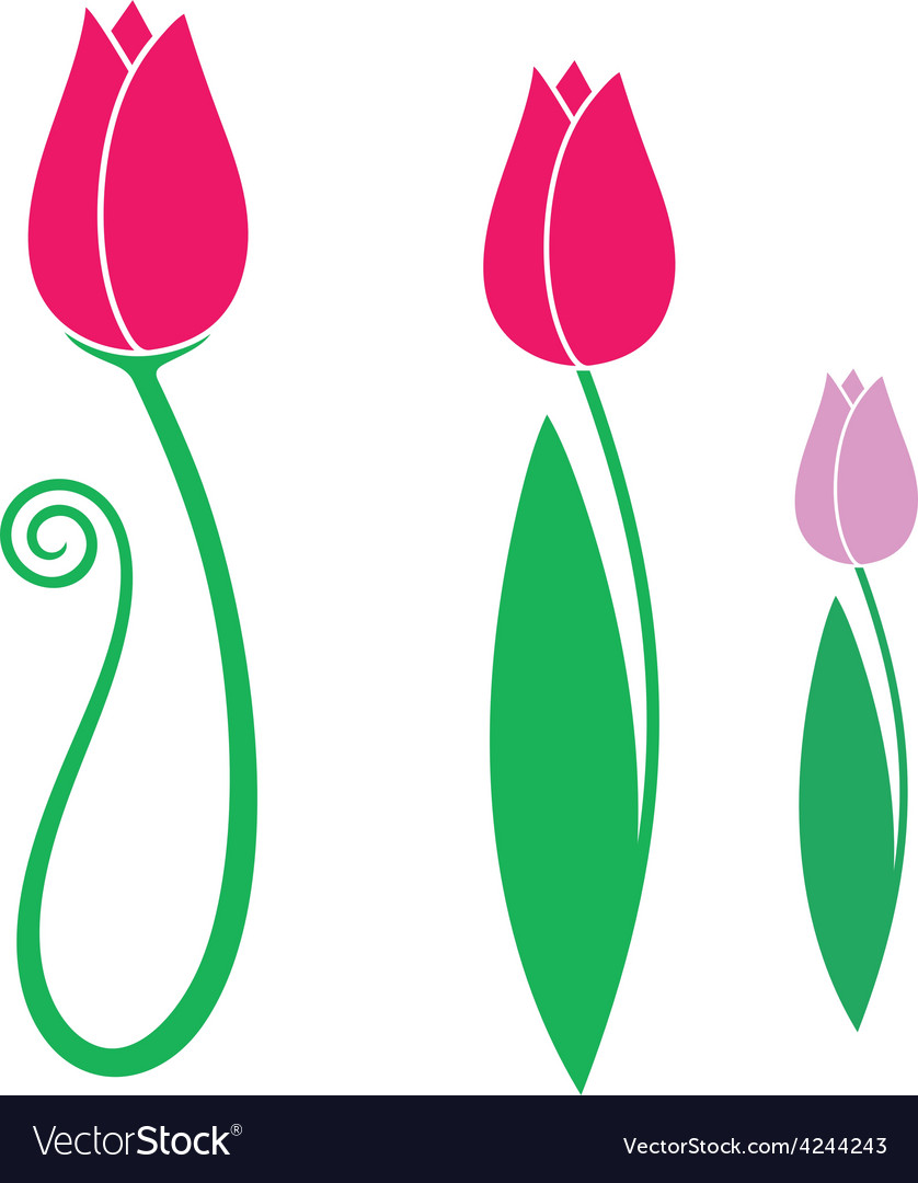 Tulip set vector | Price: 1 Credit (USD $1)
