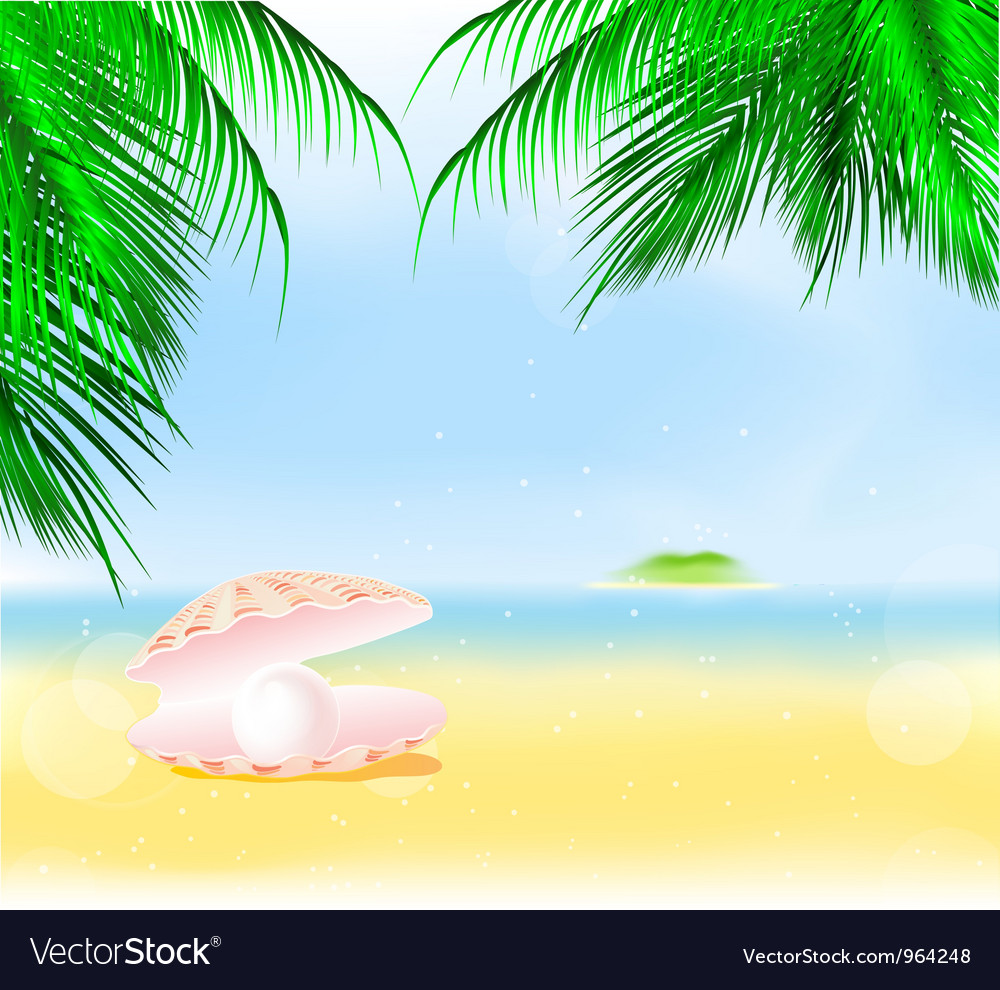 Palm islands pearl vector | Price: 1 Credit (USD $1)