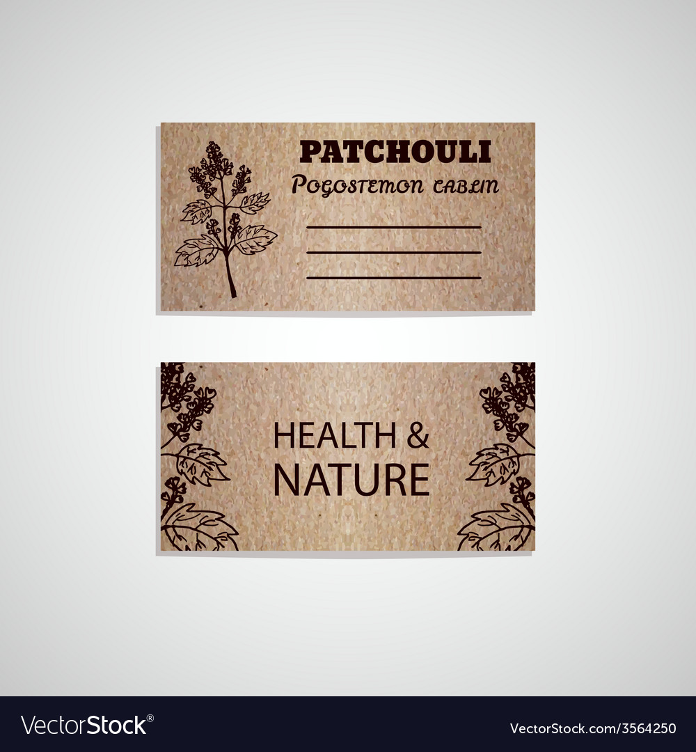 Health and nature collection vector | Price: 1 Credit (USD $1)