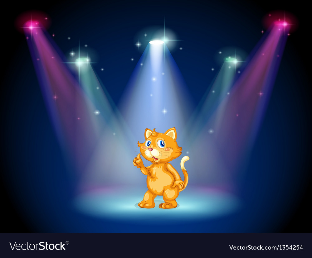 Cat on stage vector | Price: 1 Credit (USD $1)