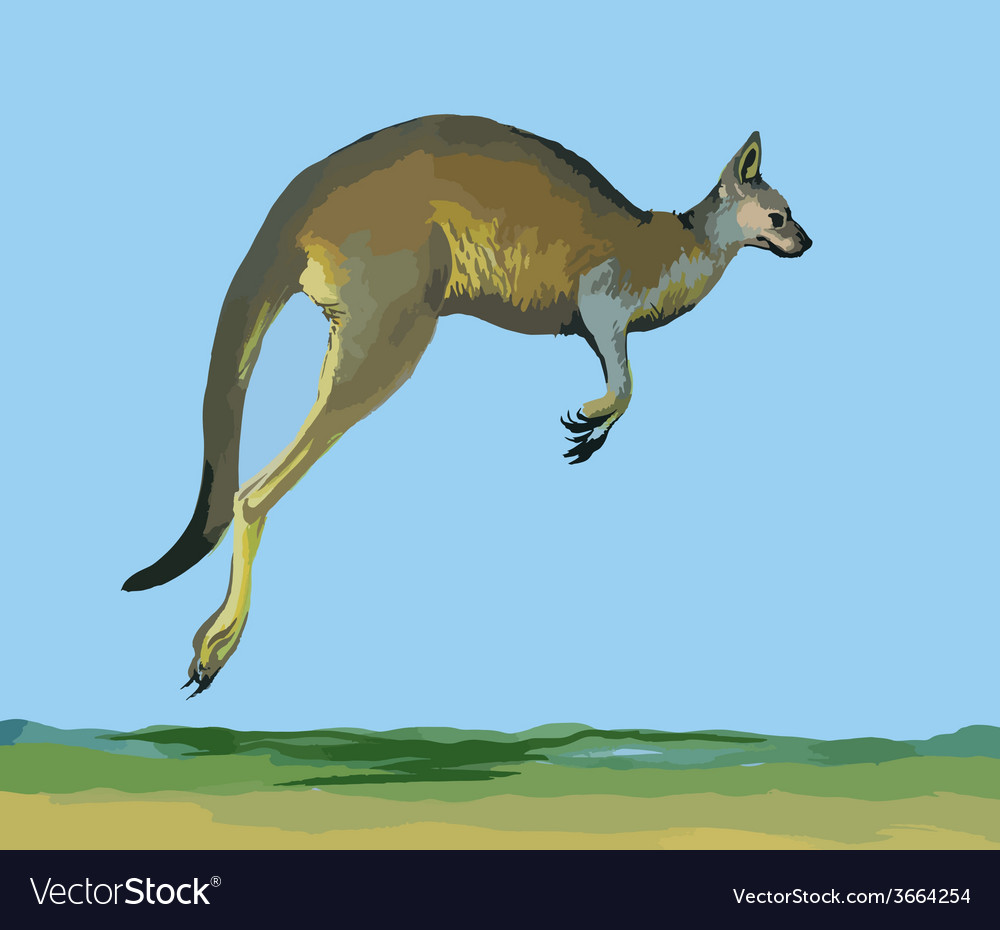 Watercolor kangaroo on blue background vector | Price: 1 Credit (USD $1)