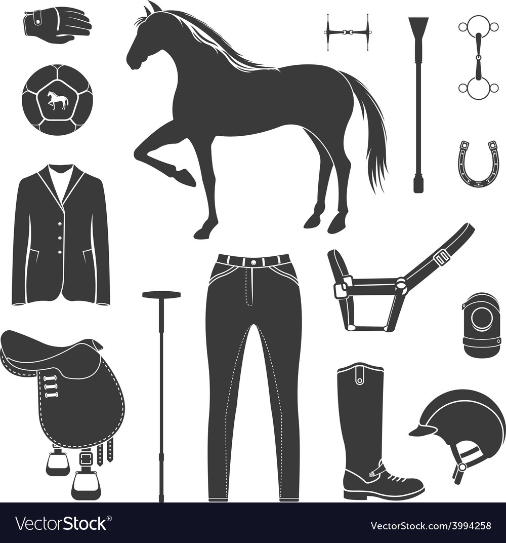 Set of icons polo vector | Price: 1 Credit (USD $1)