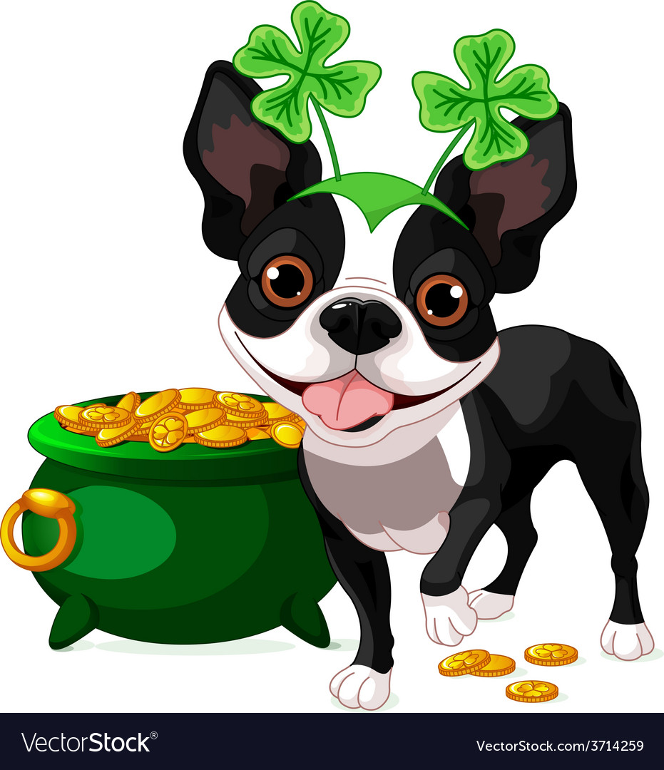 Boston terrier celebrates saint patrick day vector | Price: 3 Credit (USD $3)