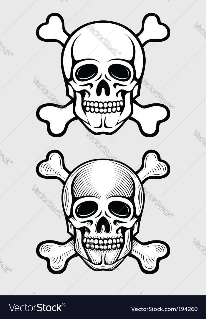 Skull and skeleton bones vector | Price: 1 Credit (USD $1)