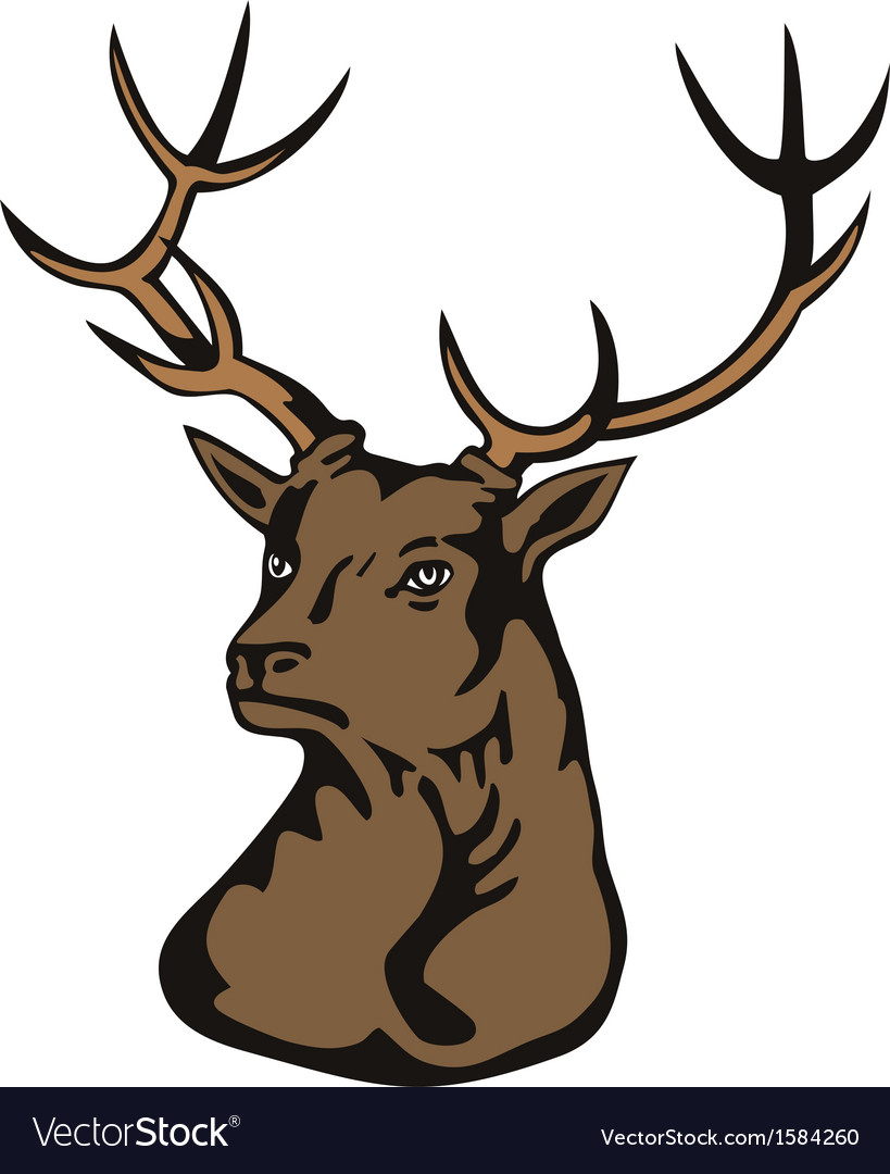 Stag head vector | Price: 1 Credit (USD $1)