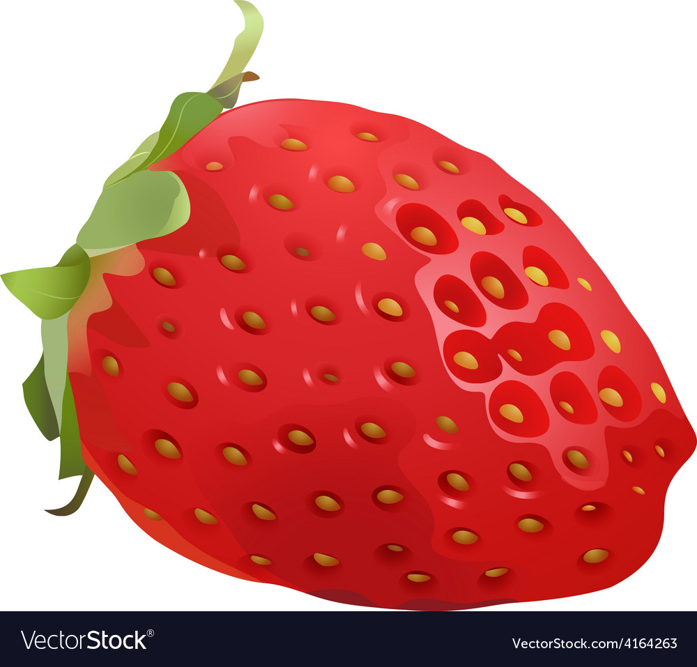 Delicious and juicy stawberry vector | Price: 1 Credit (USD $1)