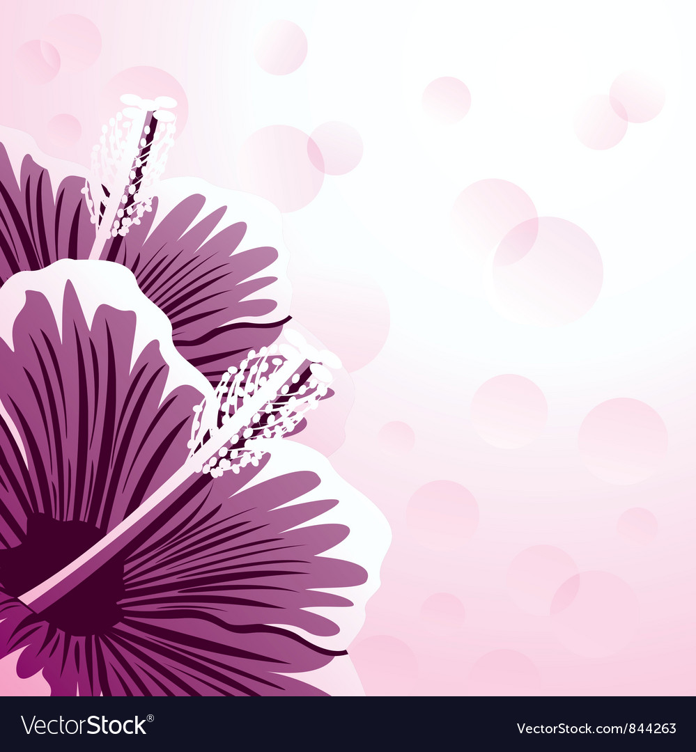 Hibiscus vector | Price: 1 Credit (USD $1)