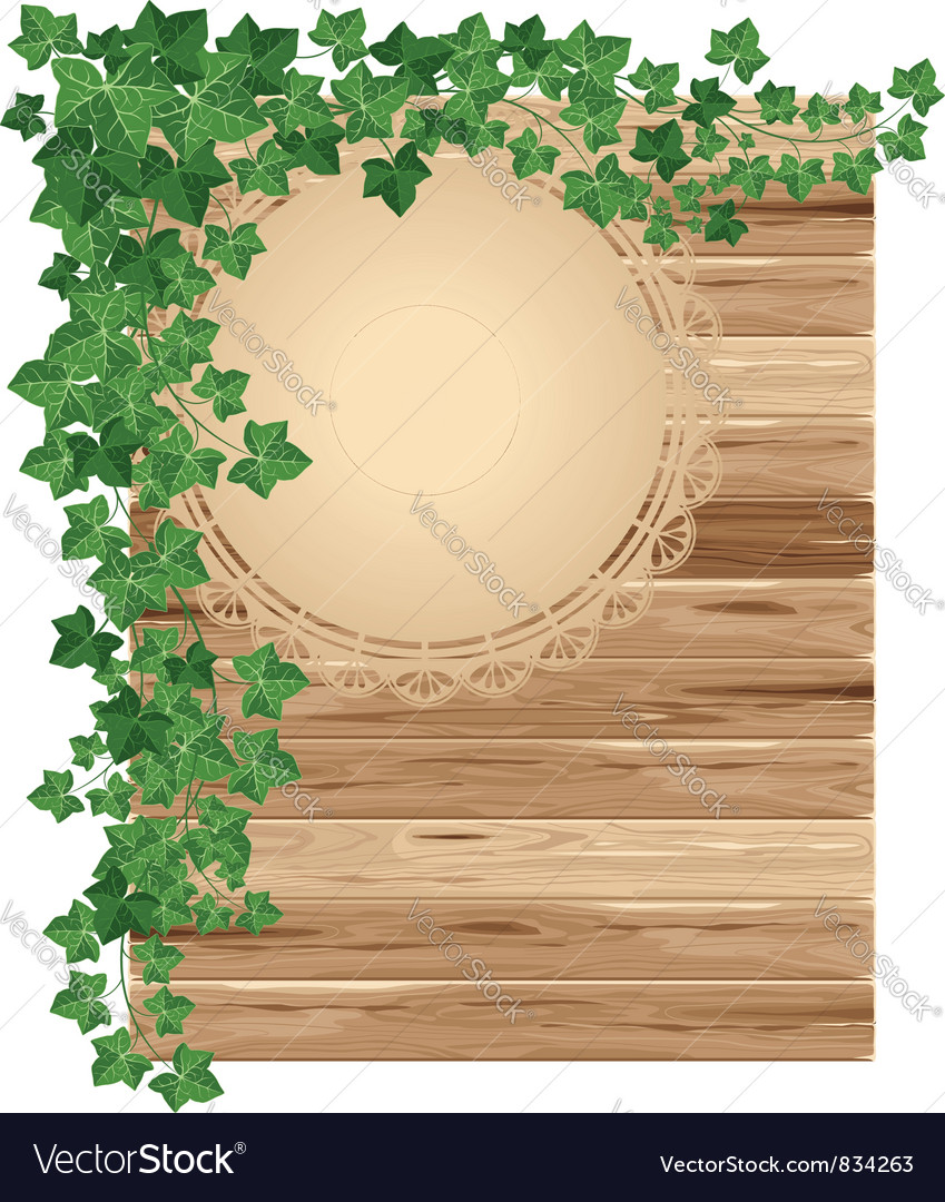 Wooden background with ivy vector | Price: 3 Credit (USD $3)