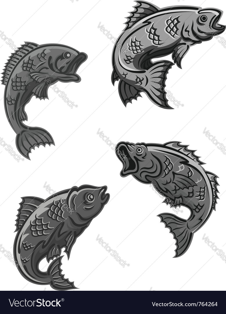 Perch carp vector | Price: 1 Credit (USD $1)