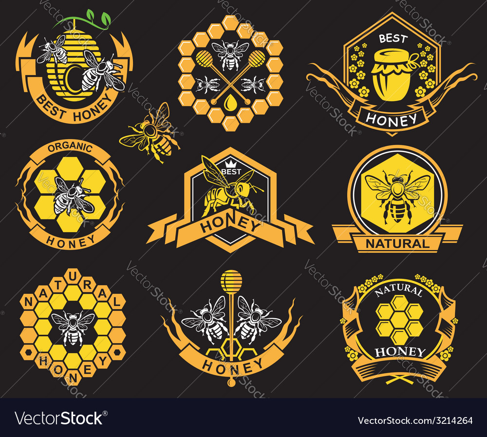 Set of honey labels vector | Price: 1 Credit (USD $1)