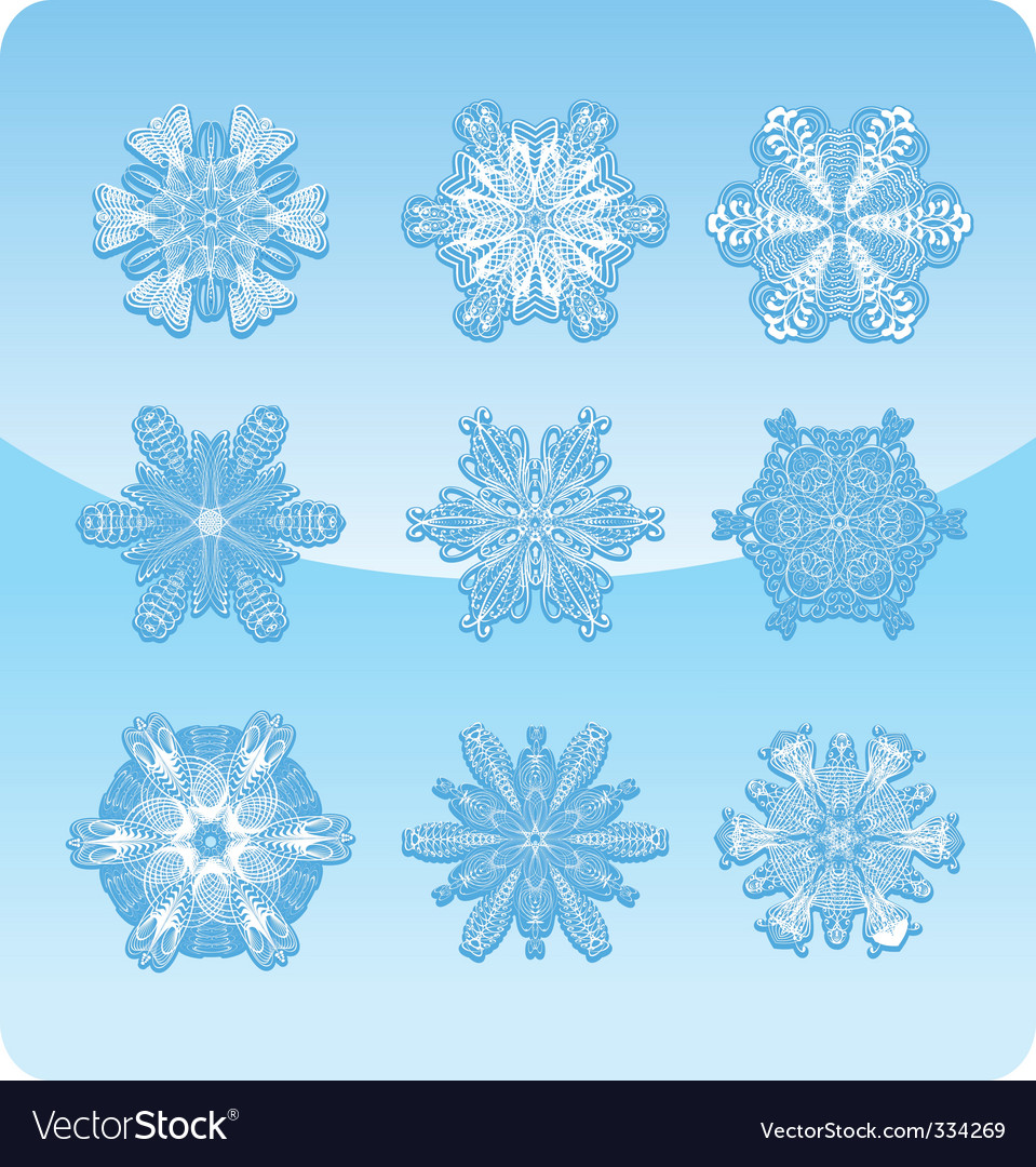 Set of graceful snowflakes vector | Price: 1 Credit (USD $1)
