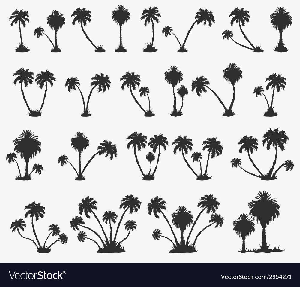 Set of solar palm beach vector | Price: 1 Credit (USD $1)