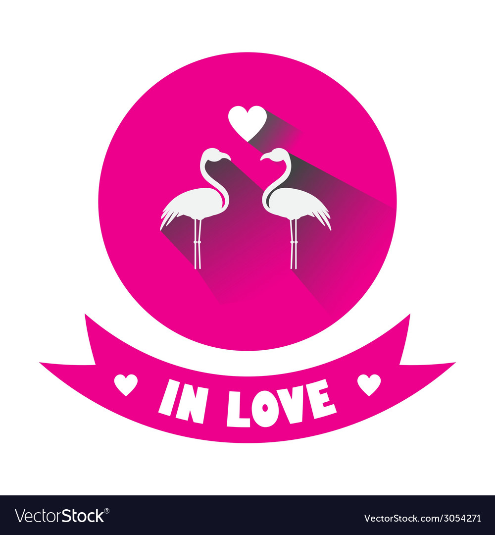 Two flamingos in love vector | Price: 1 Credit (USD $1)
