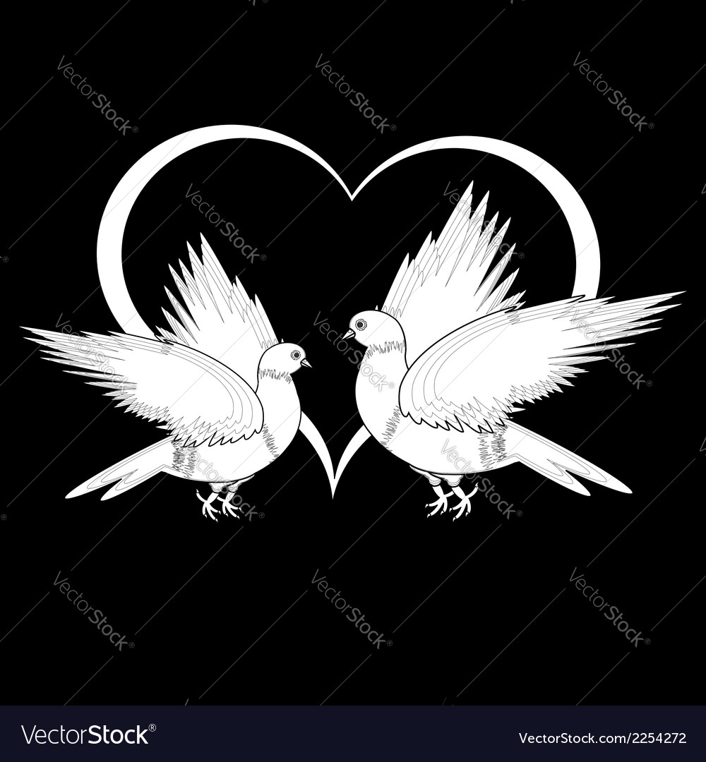 A monochrome sketch of two flying doves vector | Price: 1 Credit (USD $1)