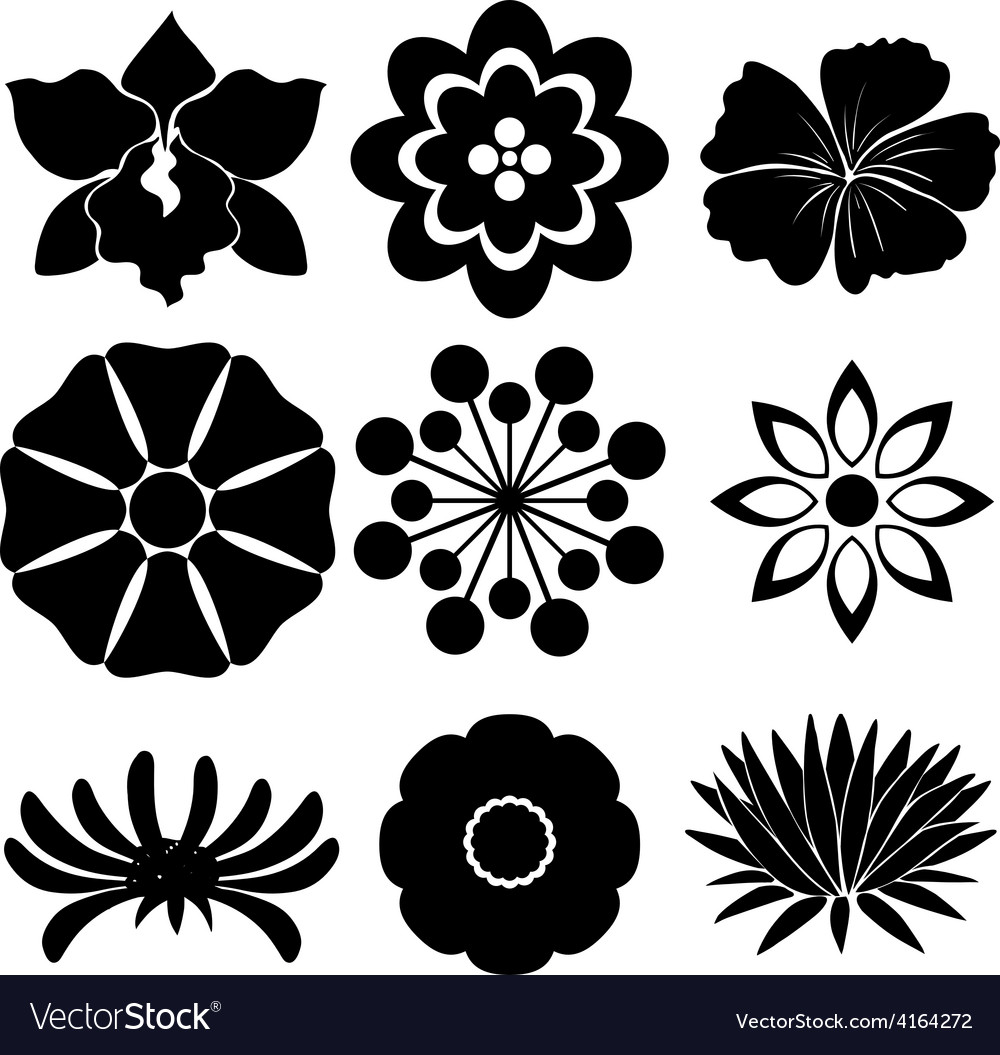 Group of floral templates vector | Price: 1 Credit (USD $1)