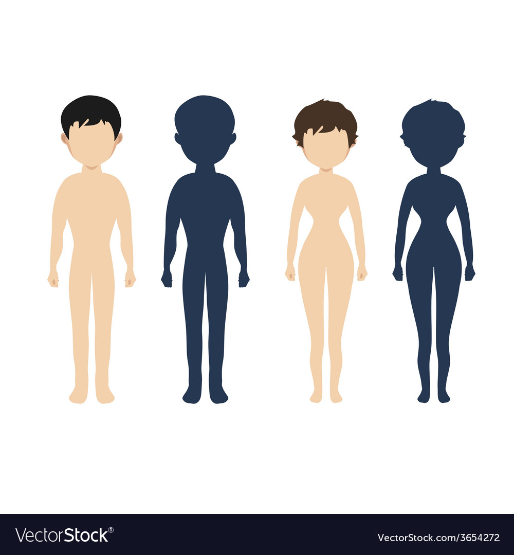 Human body in flat style women men character vector   Price: 1 Credit (USD $1)