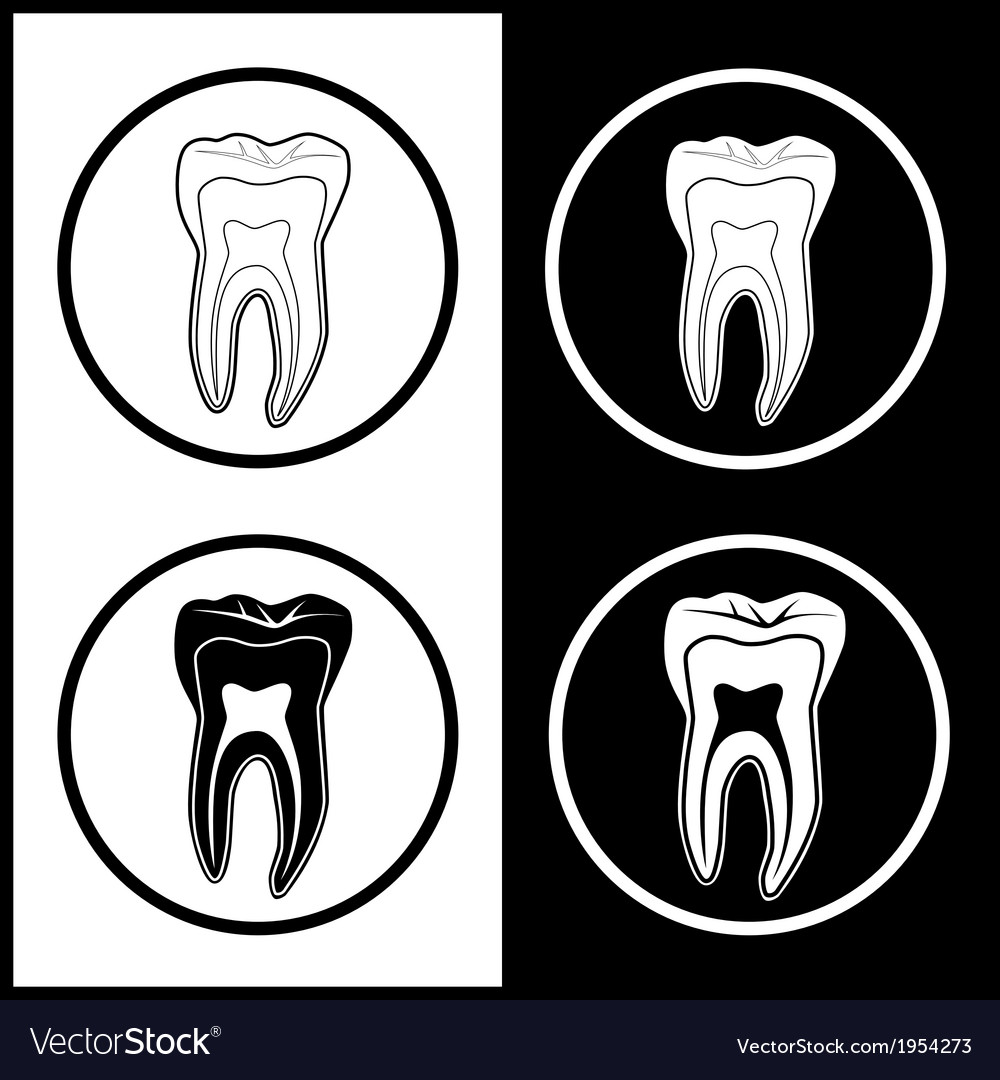 Tooth icons vector | Price: 1 Credit (USD $1)