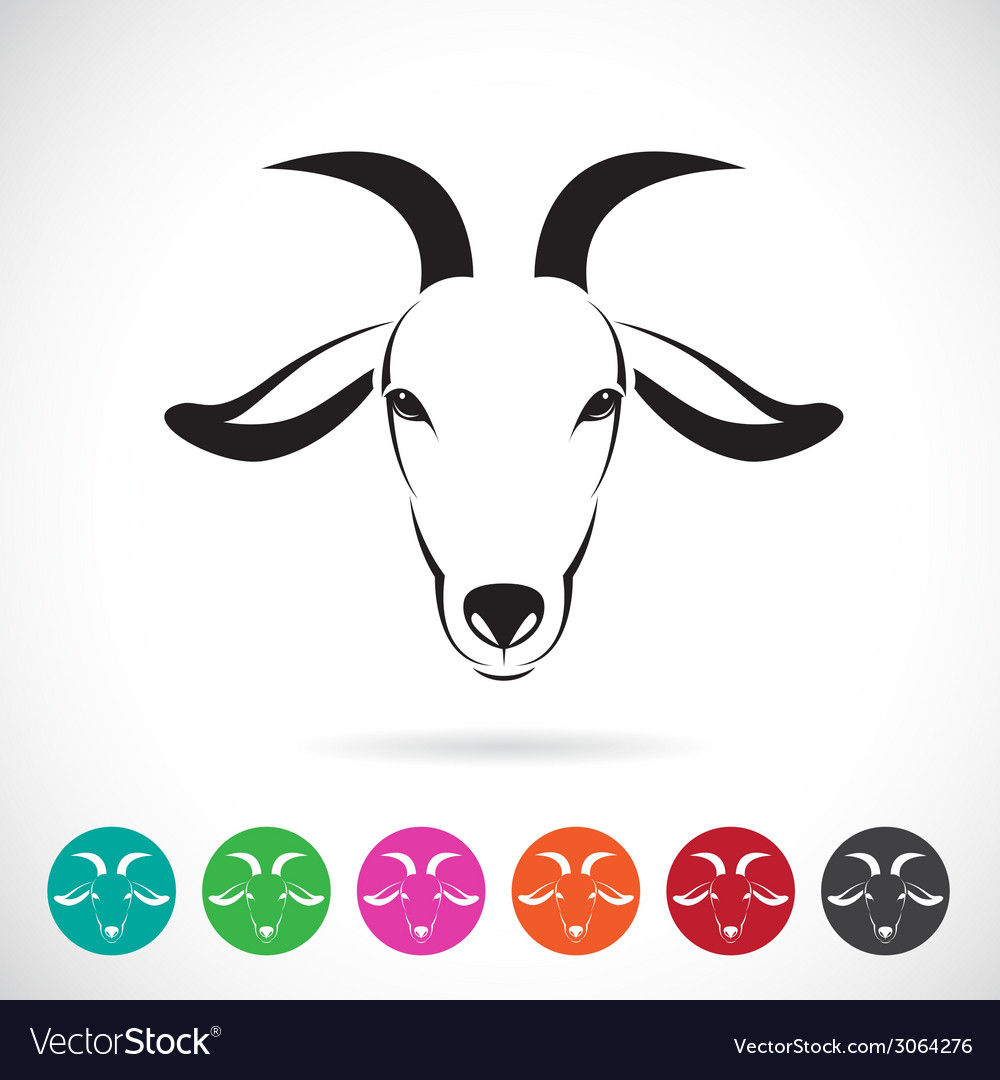 Image of an goat head vector | Price: 1 Credit (USD $1)