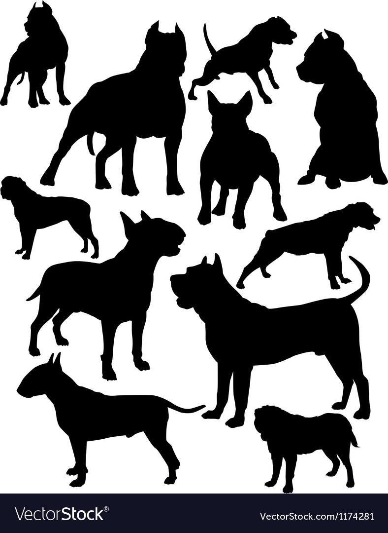 Fighting dogs vector   Price: 1 Credit (USD $1)