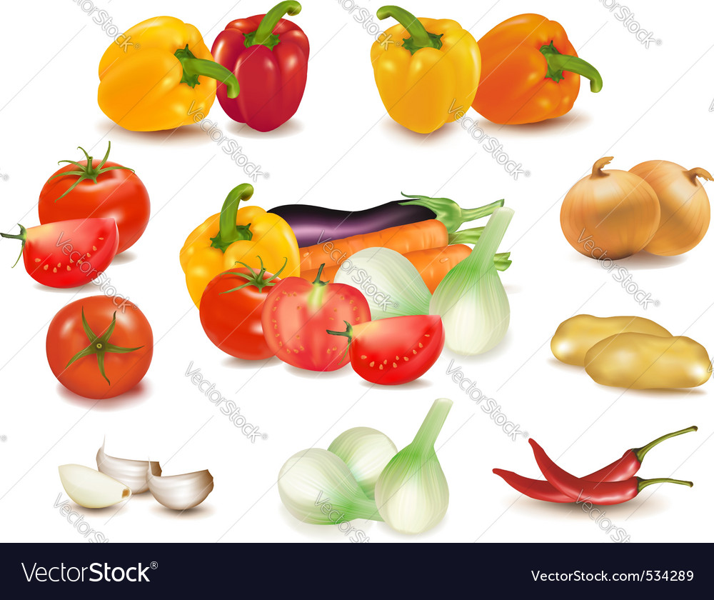 Collection of vegetables vector | Price: 3 Credit (USD $3)