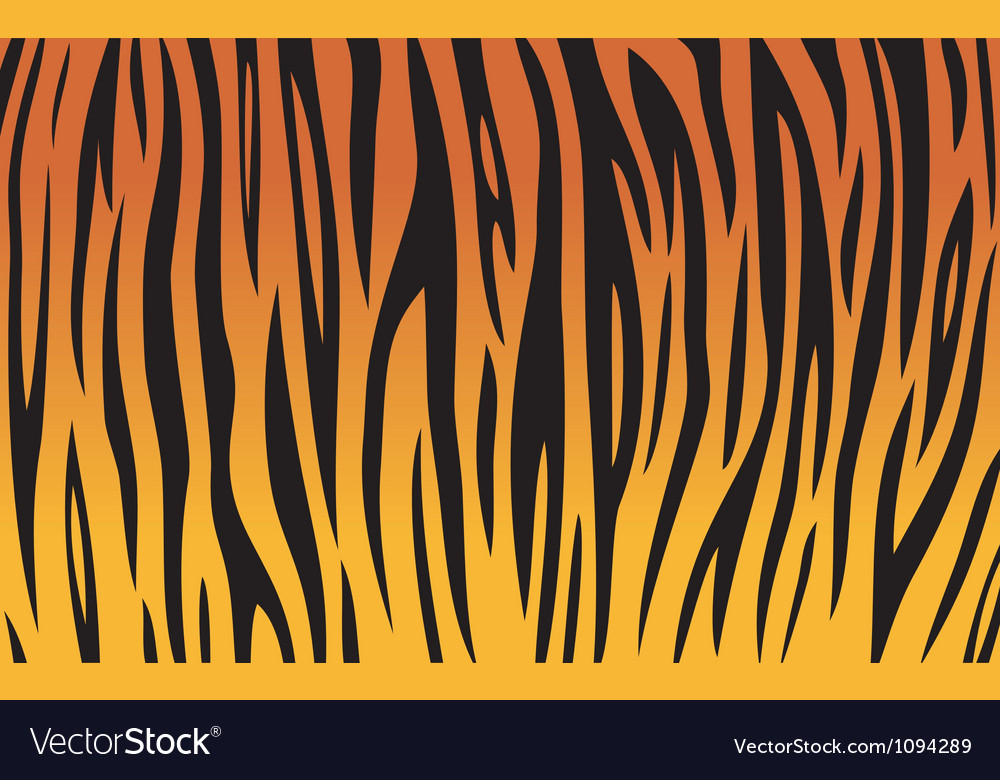 Tiger skin texture background vector | Price: 1 Credit (USD $1)