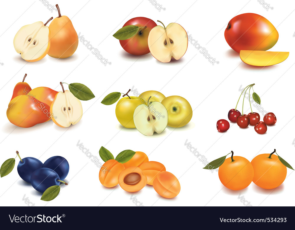 Group with different fruit vector | Price: 3 Credit (USD $3)
