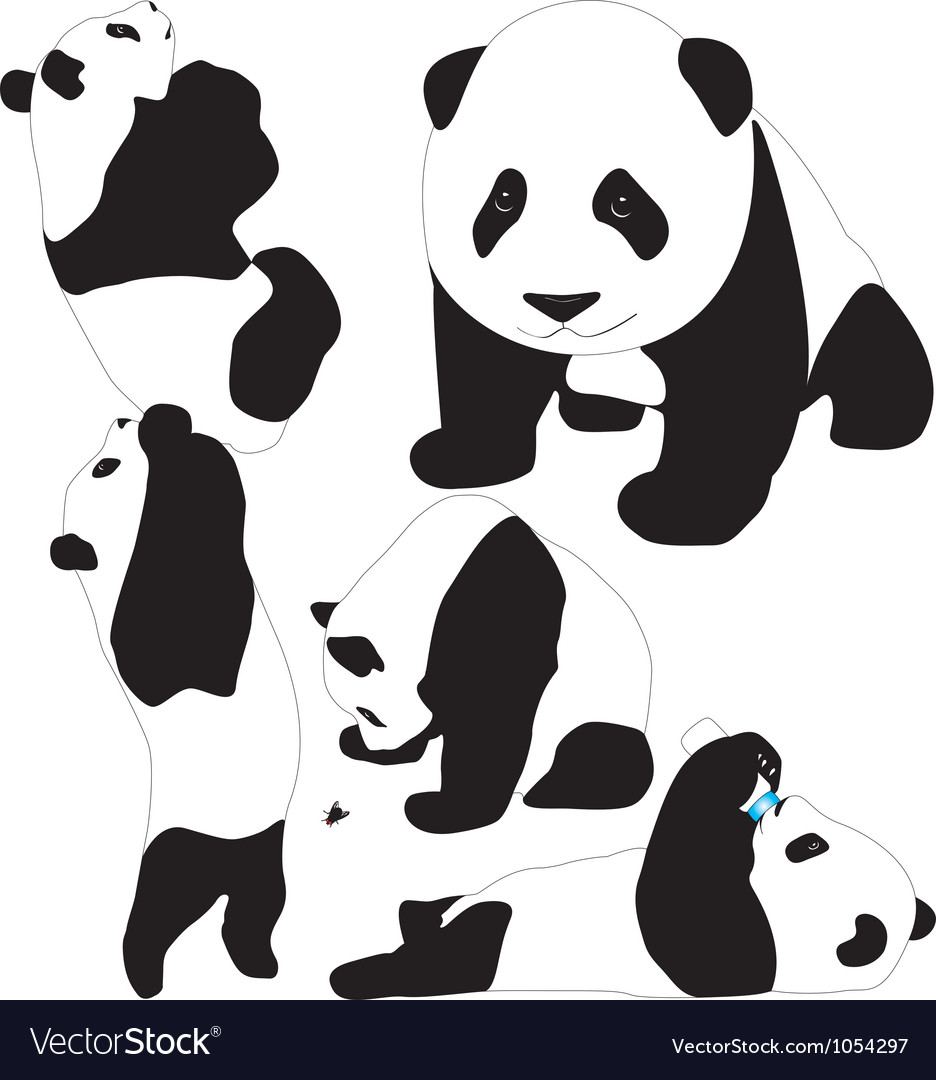 Panda babies silhouettes vector | Price: 1 Credit (USD $1)