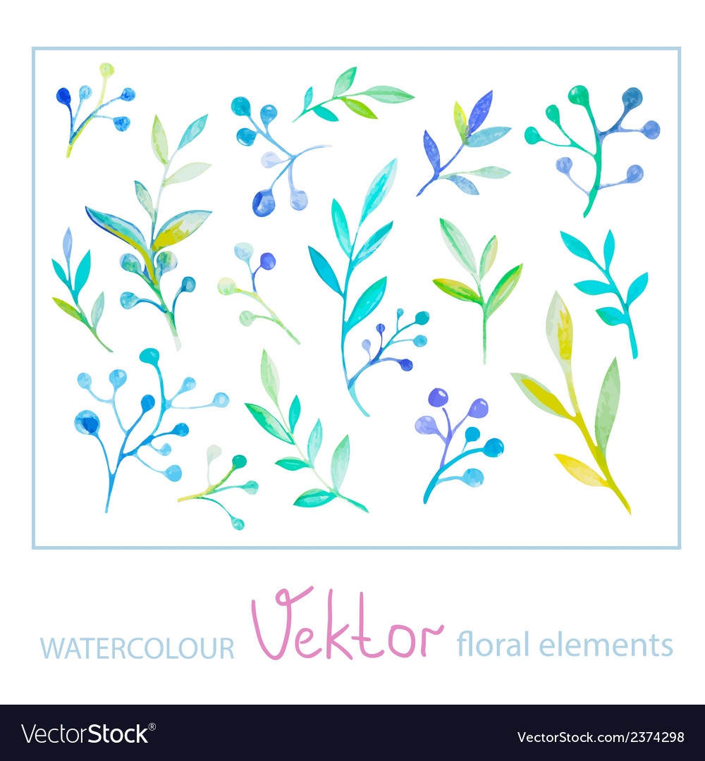 Set of watercolor floral elements vector   Price: 1 Credit (USD $1)