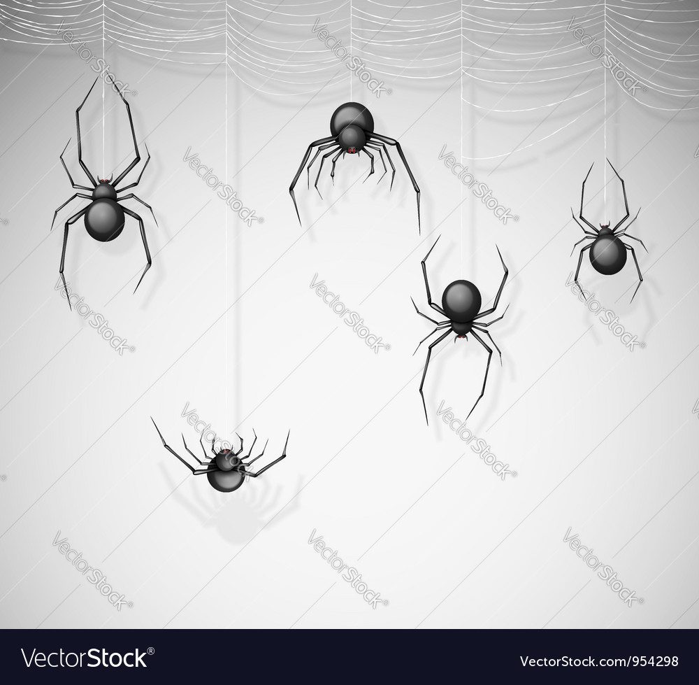 The spiders vector | Price: 1 Credit (USD $1)