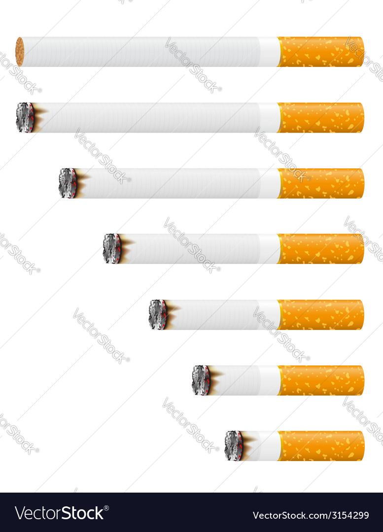 Cigarette 03 vector | Price: 1 Credit (USD $1)
