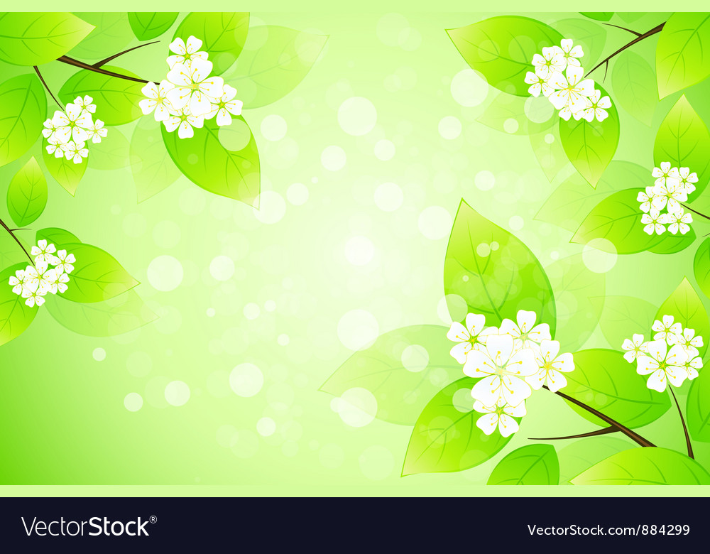 Framing with blossom vector | Price: 1 Credit (USD $1)