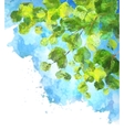 Green leaves tree branches watercolor vector