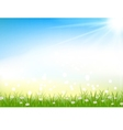 Nature background with grass and light effects vector