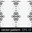 Swirls ribbons pattern vector