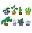 Cartoon flowers in pots vector