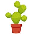 Cactus cartoon vector