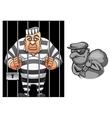 Cartoon prisoner in jail and robber in mask vector