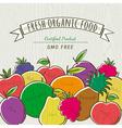 Set of organic fruits vector