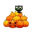 Heap of halloween pumpkins with a black cat on it vector