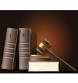 Judge gavel and book of law vector