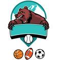 Bear mascot vector