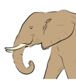 Elephant head drawing isolated on white vector