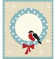 Bullfinch bird christmas card template vector