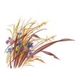 Hand drawn herbs vector