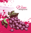Hand drawn wine vintage background vector
