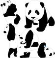 Panda babies silhouettes vector