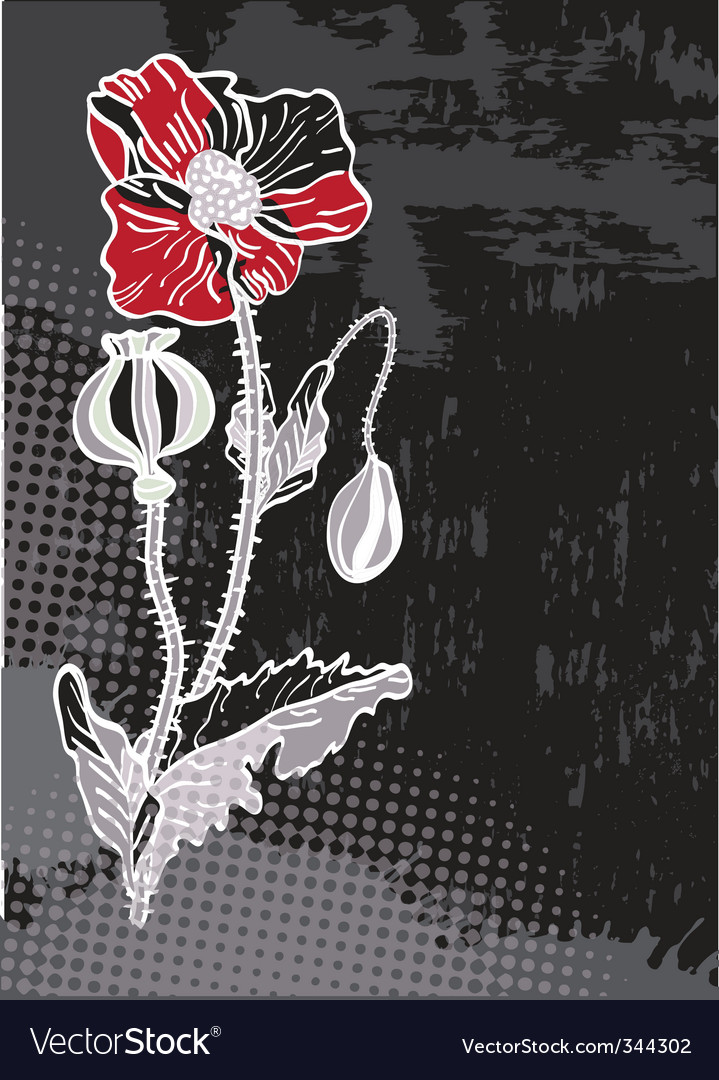 Grunge floral card with poppy vector | Price: 1 Credit (USD $1)